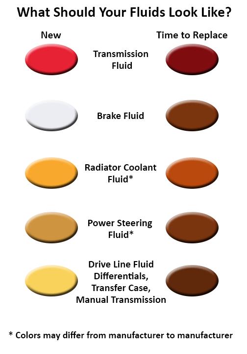 Change Your Cars Fluids